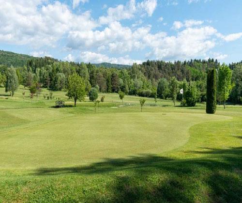 samognat_golf